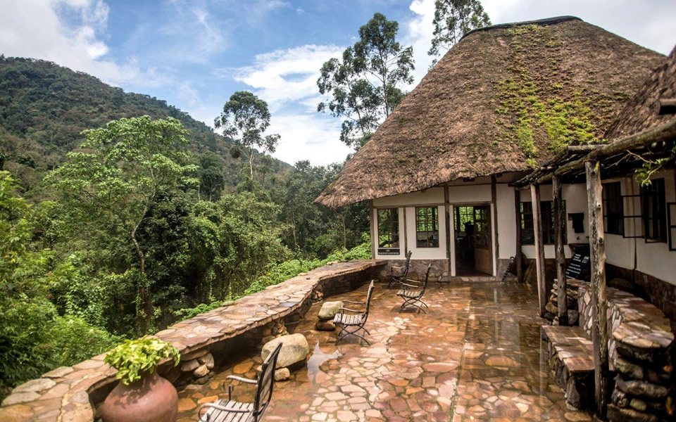 Where to stay in Bwindi Impenetrable Forest National Park?