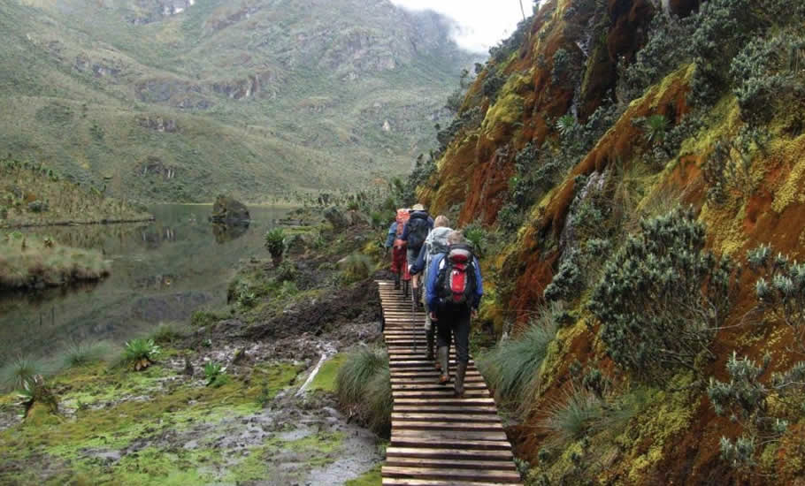 How to access Rwenzori Mountains National Park By Road & Air Transport
