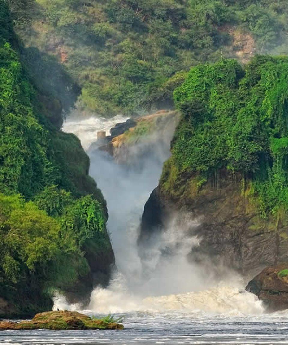 Wildlife Safari To Murchison Falls National Park